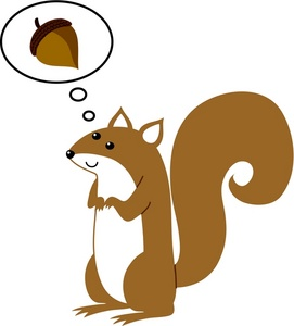 Squirrel Clip Art