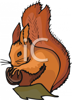 Squirrel Clip Art On the Tree