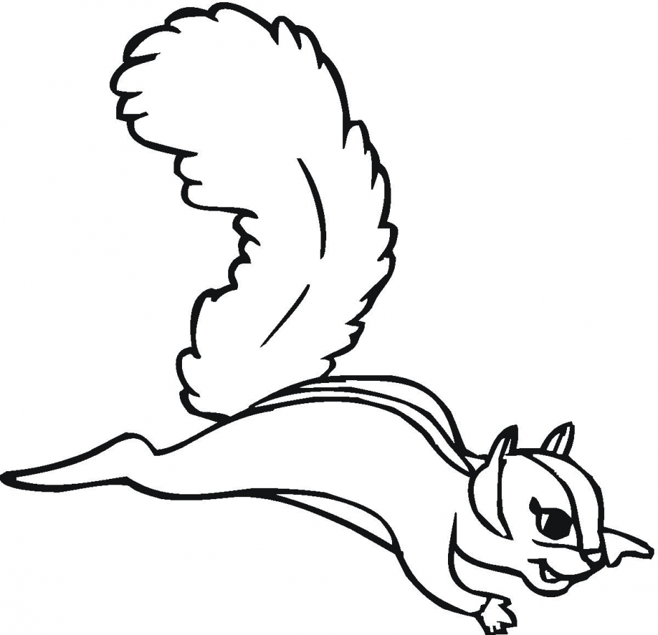 Squirrel With Acorn Coloring Page | Clipart Panda - Free Clipart Images