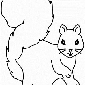pill bugs coloring pages coloring coloring pages