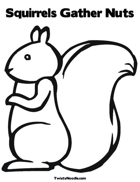 squirrel coloring pages - nuts coloring coloring pages