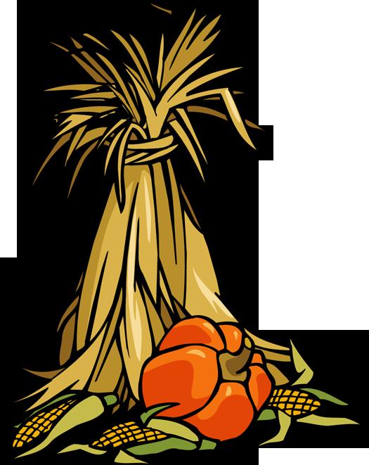 corn stalk cli clipart panda free clipart images rh clipartpanda com Corn Stalk Drawing Fall Corn Stalks