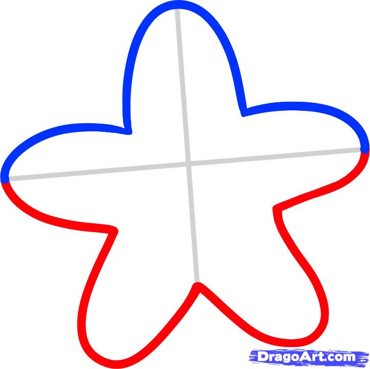 Starfish Drawing | Clipart Panda - Free Clipart Images