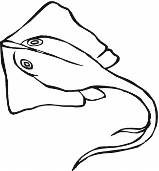 Sting Ray Clip Art 13770245