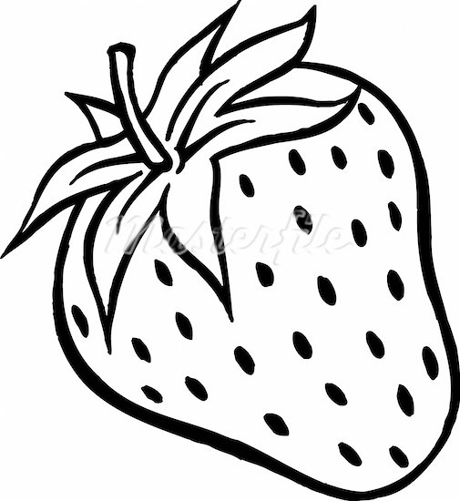 external image strawberry-clipart-black-and-white-608-00247728w.jpg