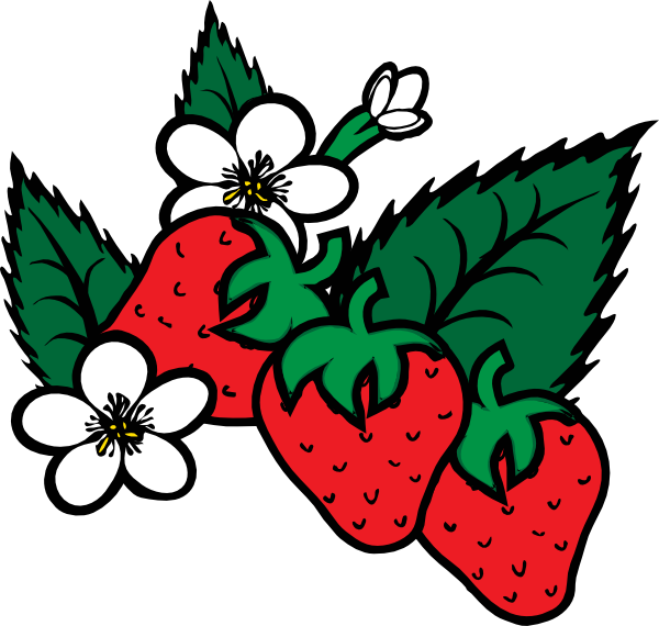 strawberry-clipart-di6eoLqXT.png