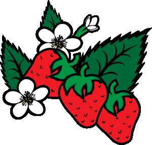 Clip Art Clipart Strawberry strawberry clipart black and white panda free clip art