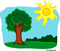 Trees summer. Tree clipart panda free
