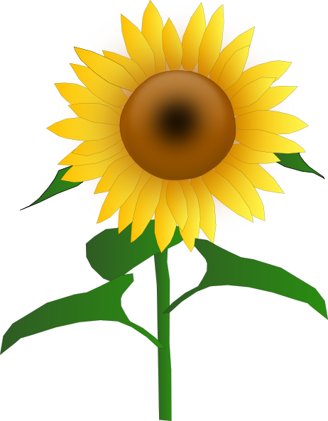 sunflower border clipart panda free clipart images rh clipartpanda com sunflower border clip art free downloadable