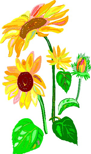 sunflower border clipart clipart panda free clipart images rh clipartpanda com sunflower border clip art free downloadable sunflower border clip art free downloadable