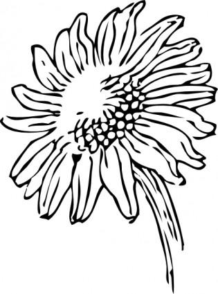 sunflower%20clipart%20black%20and%20white%20border