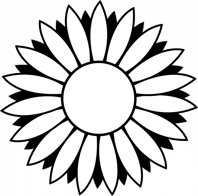 Line Art Term : Sunflower drawing black and white clipart panda free