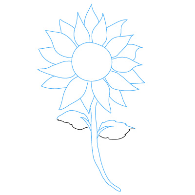 Sunflower drawing clipart panda free clipart images for How to draw websites for free