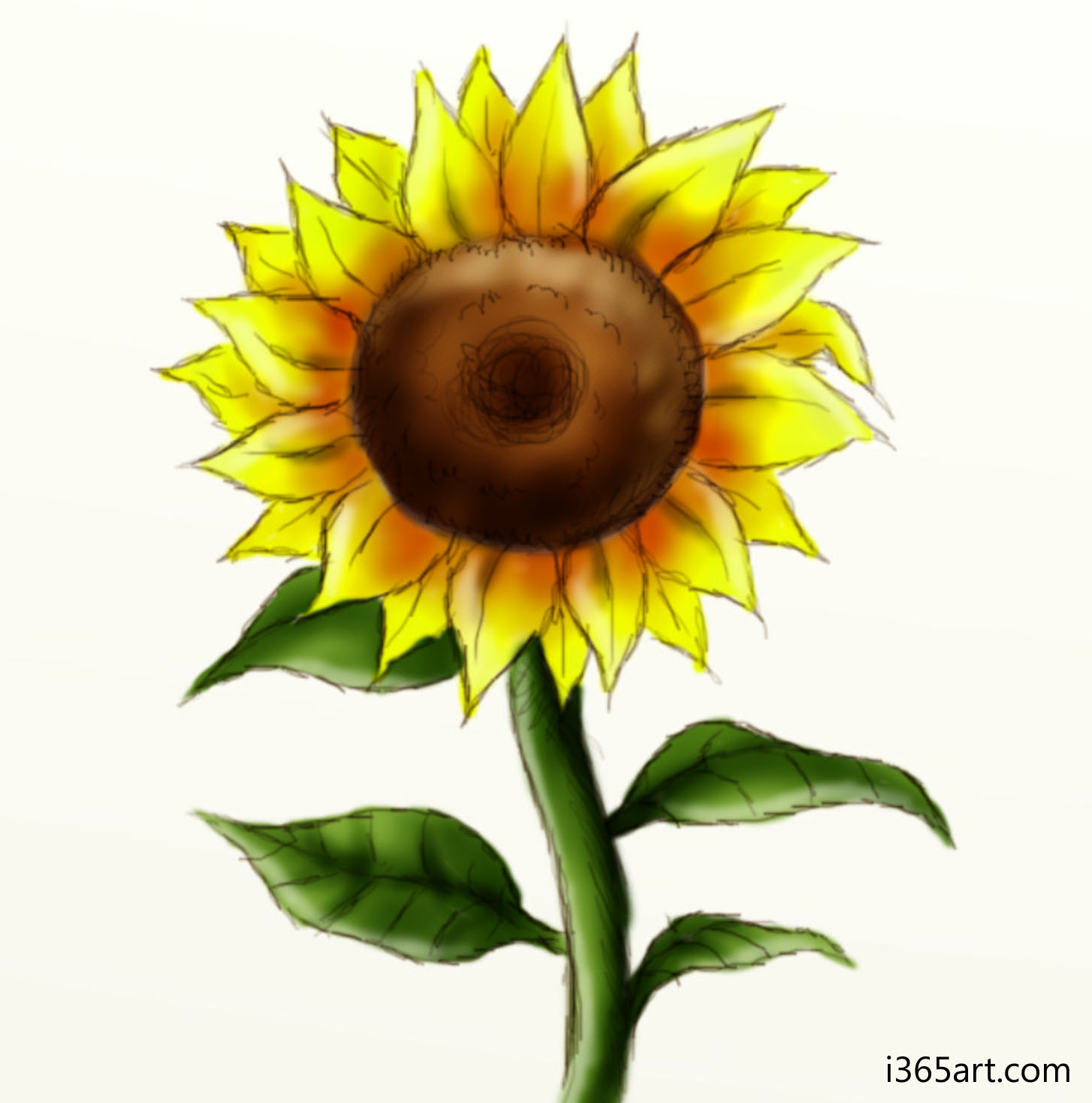sunflower online dating Remember that we are the largest free online dating service,  ok, it wasn't a sunflower that i read about it's a rudbeckia they do look similar, .