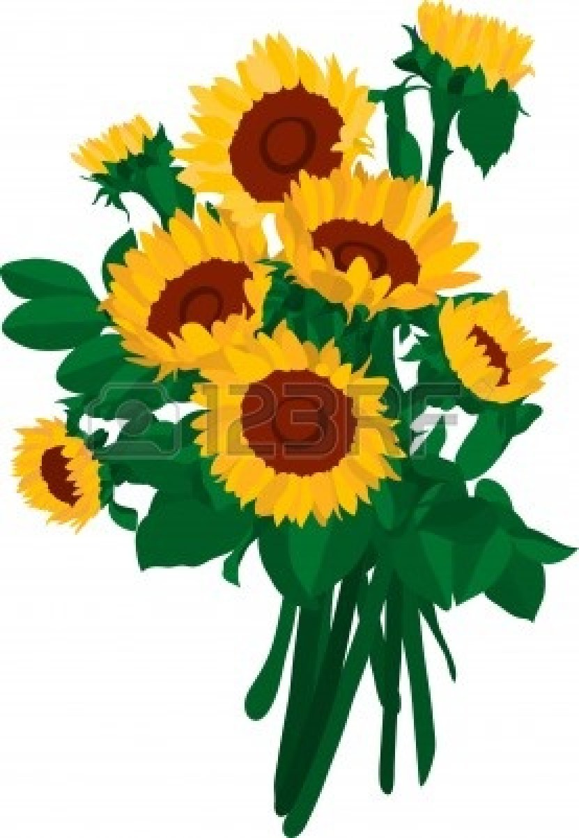 Sunflower Photography | Clipart Panda - Free Clipart Images