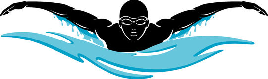 Image result for swim clip art