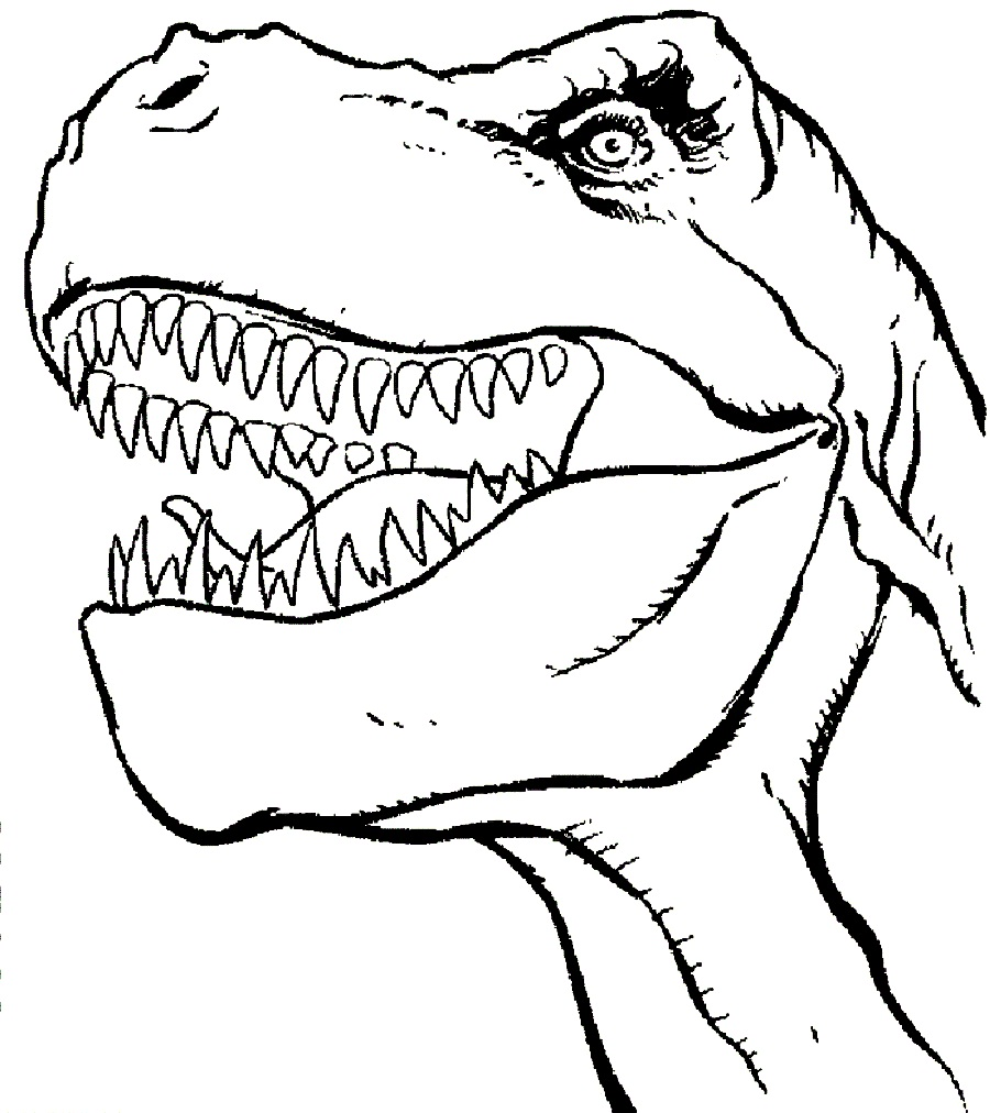 t rex coloring pages for kids - photo #12