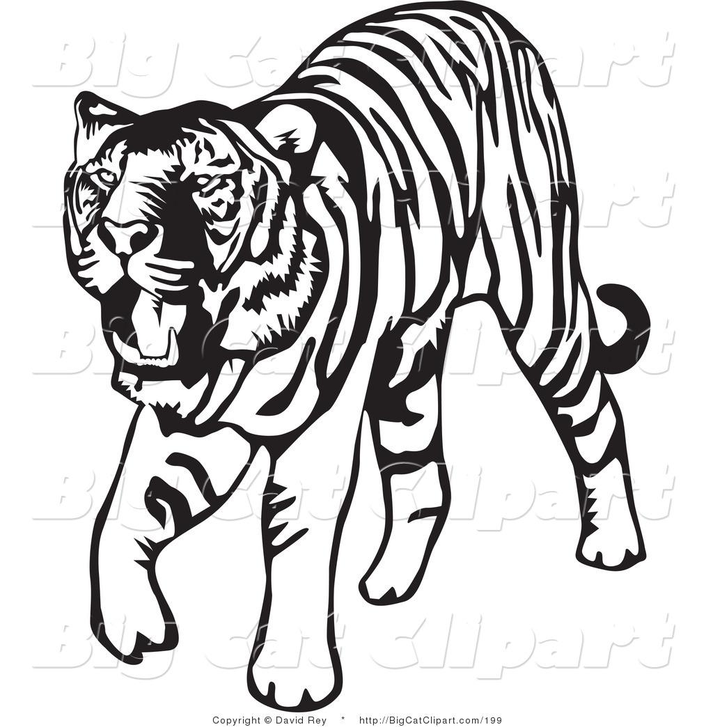 tiger head clip art clipart panda free clipart images rh clipartpanda com baby tiger clipart tiger clipart images