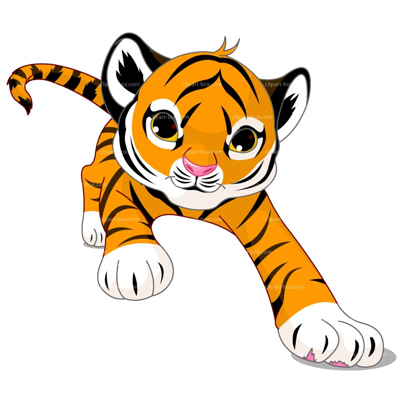 Cute Baby Tiger Clipart Of A Cute Baby Tiger Cub Pictures to pin on ...