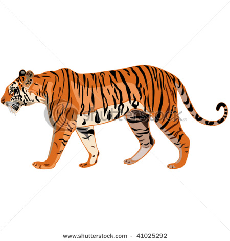 Clip Art Tiger - Synkee