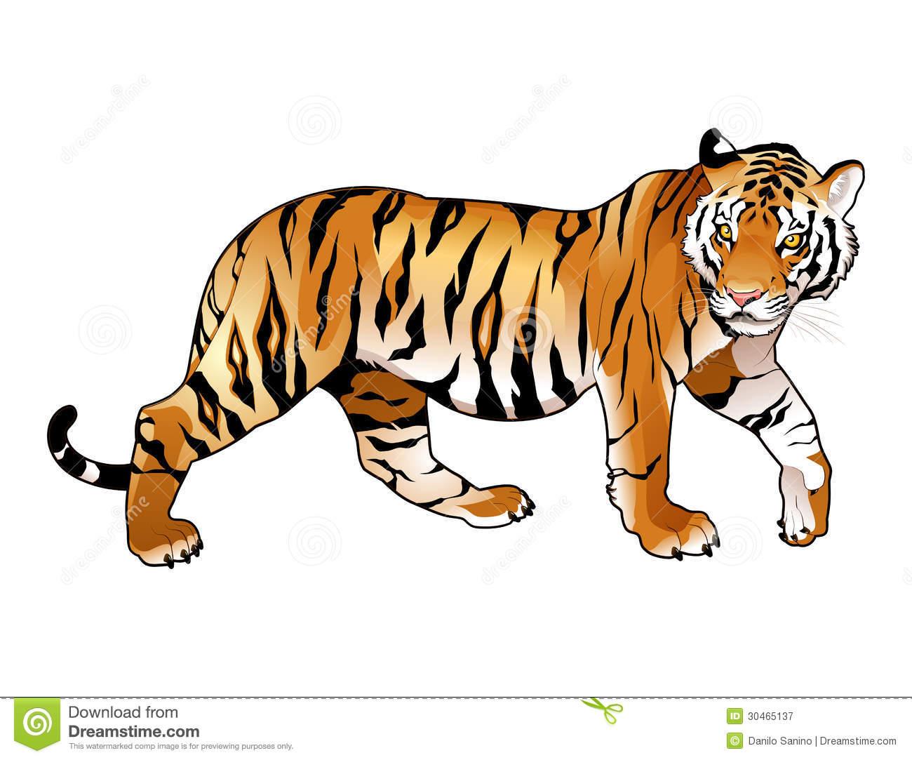 tiger clip art sports clipart panda free clipart images
