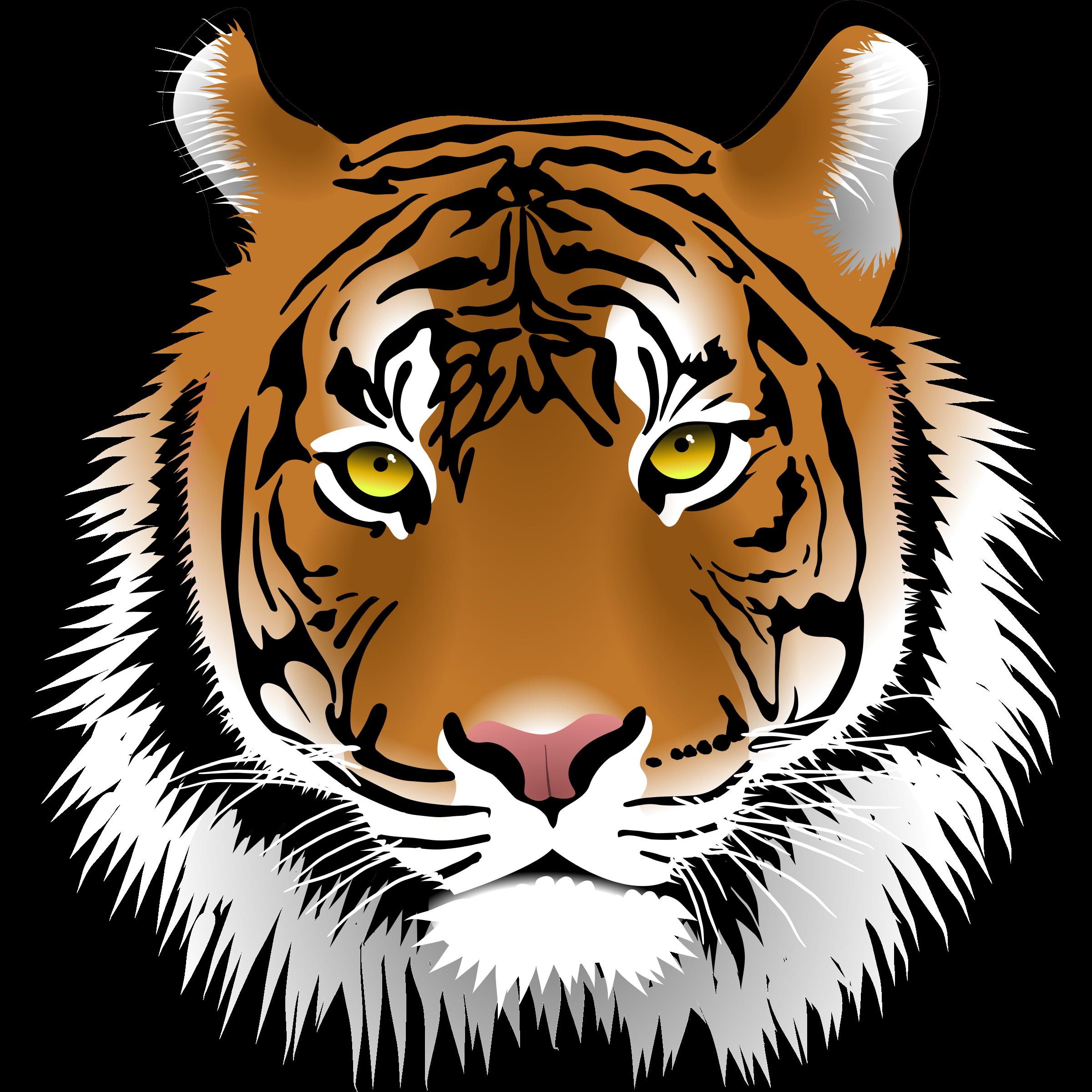 Transparent Tiger Clip Art