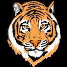 Tiger Face Clip Art Color | Clipart Panda - Free Clipart ...