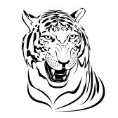 tiger%20face%20clip%20art%20black%20and%20white