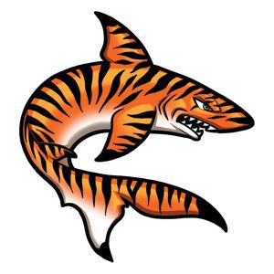 tiger shark clip art clipart panda free clipart images tiger clipart images black and white tiger clipart free