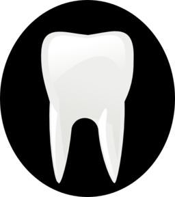 Tooth Clip Art