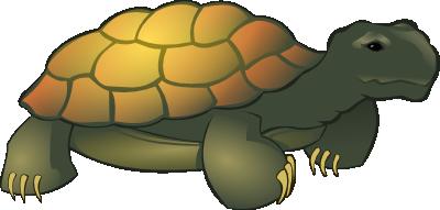 17 tortoise clip art clipart panda free clipart images rh clipartpanda com tortoise clipart images tortoise clipart pictures