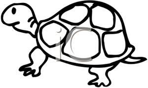 tortoise%20clipart