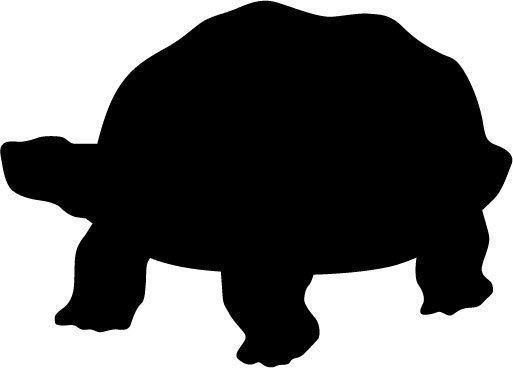 Tortoise Clipart Free