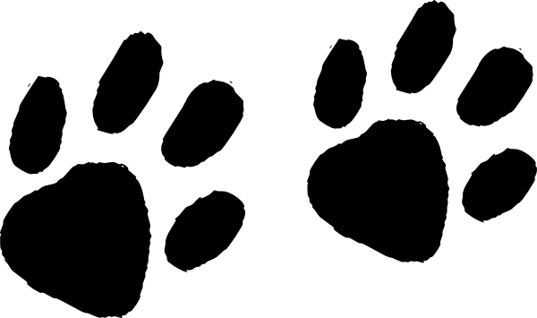 Cat Paw Print Vs Dog