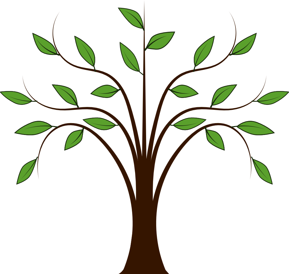 Clipart Picture Of Tree