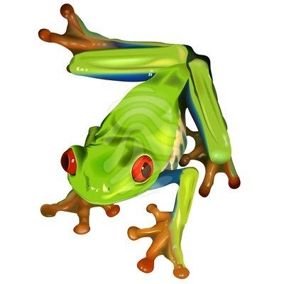 Black frog art - photo#55