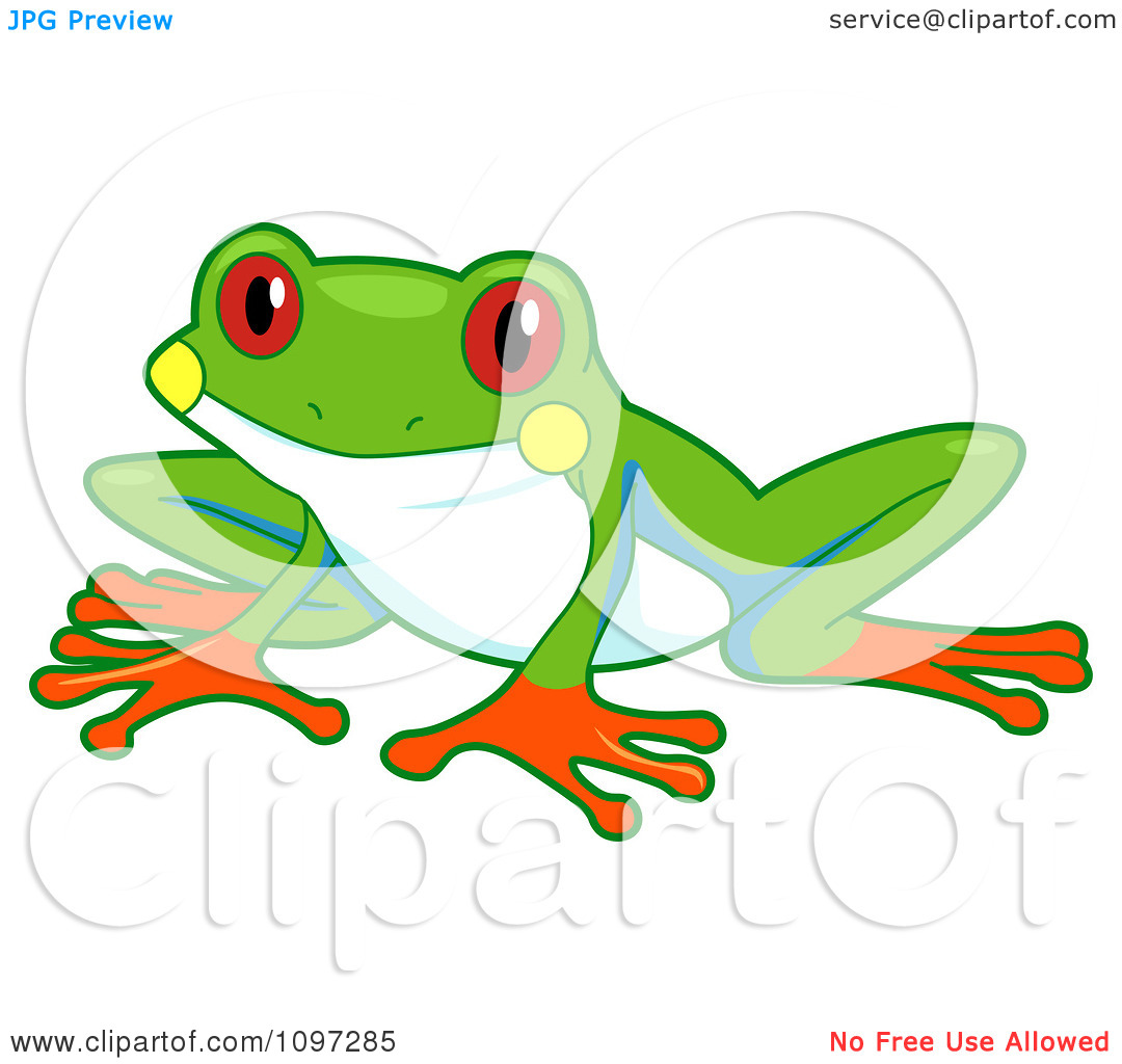 Free coloring pages red eyed tree frog - Tree 20frog 20clipart