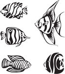 Seahorse Clipart Black And White | Clipart Panda - Free Clipart Images