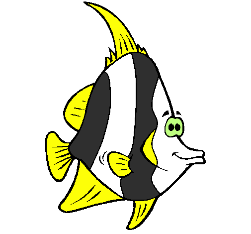 Free Coloring Pages Of Tropical Fish