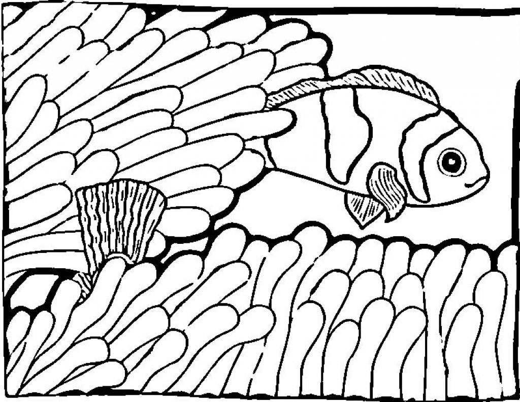 tropical20fish20coloring20pages