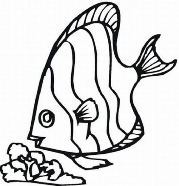 Tropical Fish Coloring Pages #7