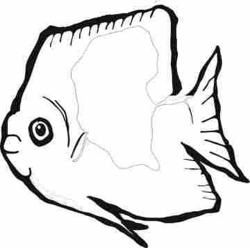 Fish coloring pages clipart panda free clipart images for Tropical fish coloring page