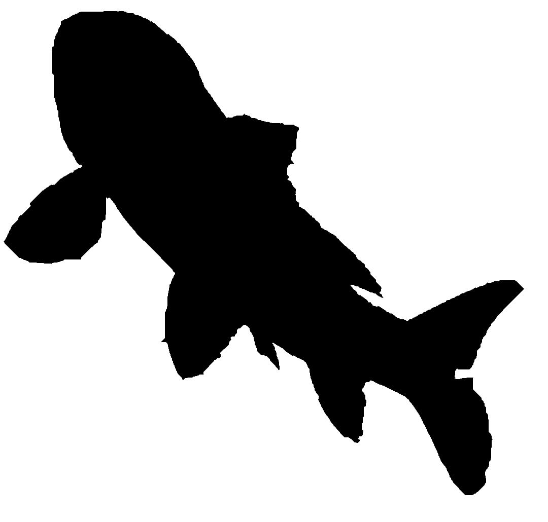 fish-silhouette