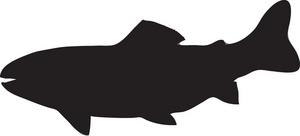 trout clipart clipart panda free clipart images rh clipartpanda com Trout Illustrations Trout Fish Clip Art