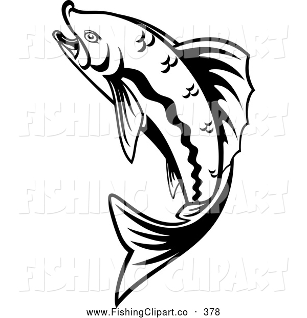 trout fishing clipart clipart panda free clipart images rh clipartpanda com Trout Illustrations free trout clipart black and white