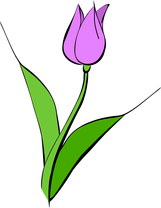 free clipart tulip flower - photo #35