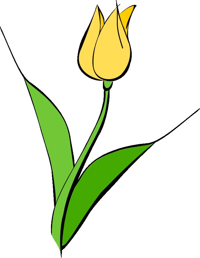 free tulip flower clip art clipart panda free clipart images rh clipartpanda com tulip clipart free black and white