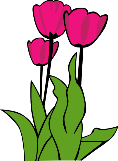 tulip clipart clipart panda free clipart images rh clipartpanda com free clip art tulip border free tulip flower clipart
