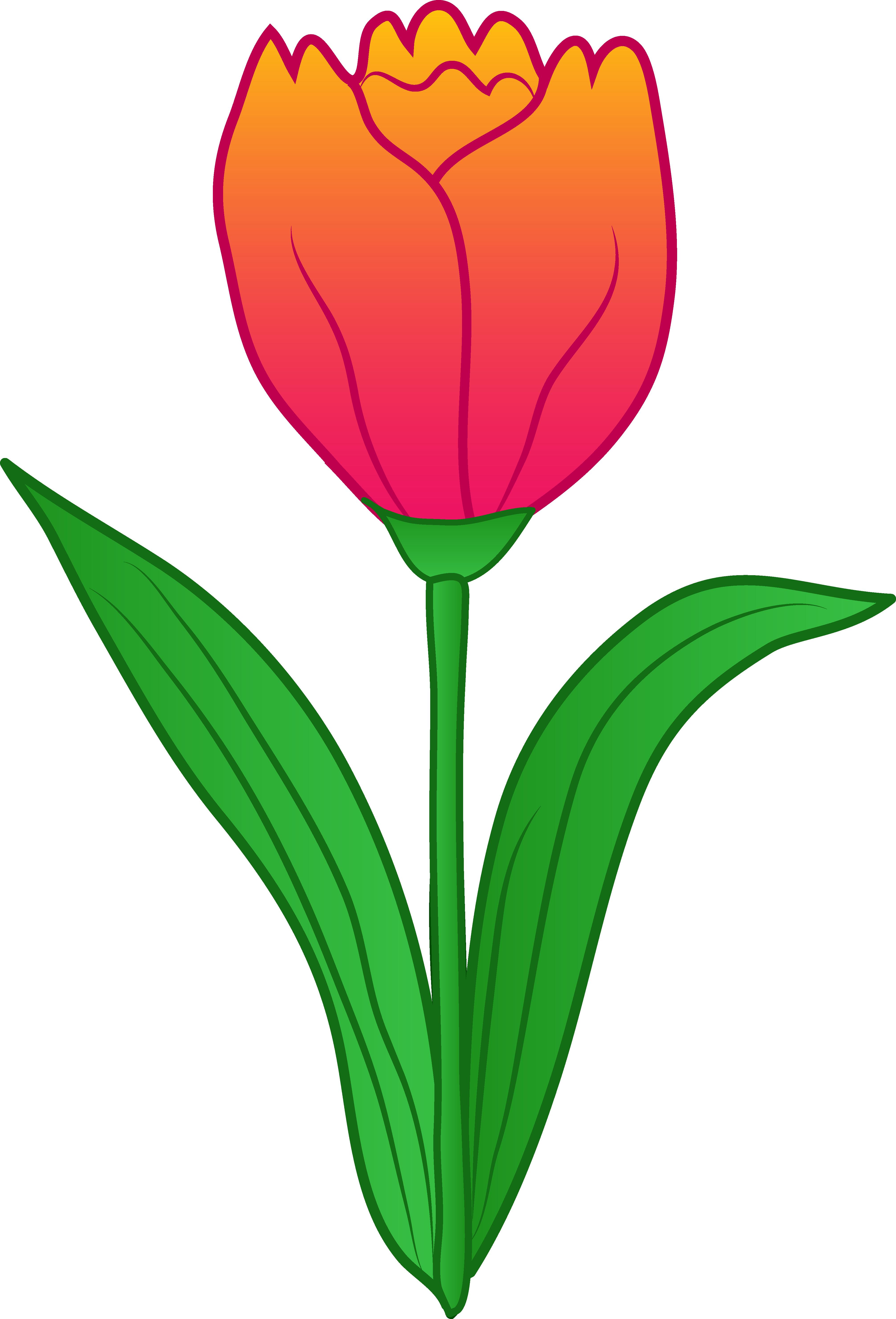 Clip Art Tulip Clip Art tulip flower clip art free clipart panda images art