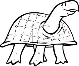 turtle%20clipart%20black%20and%20white